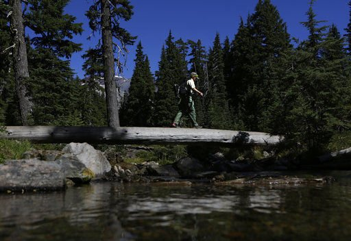 Forest Service closer to wilderness area permit proposal
