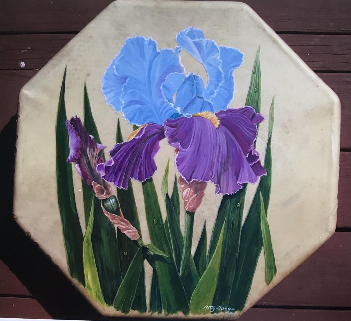 Iris drum