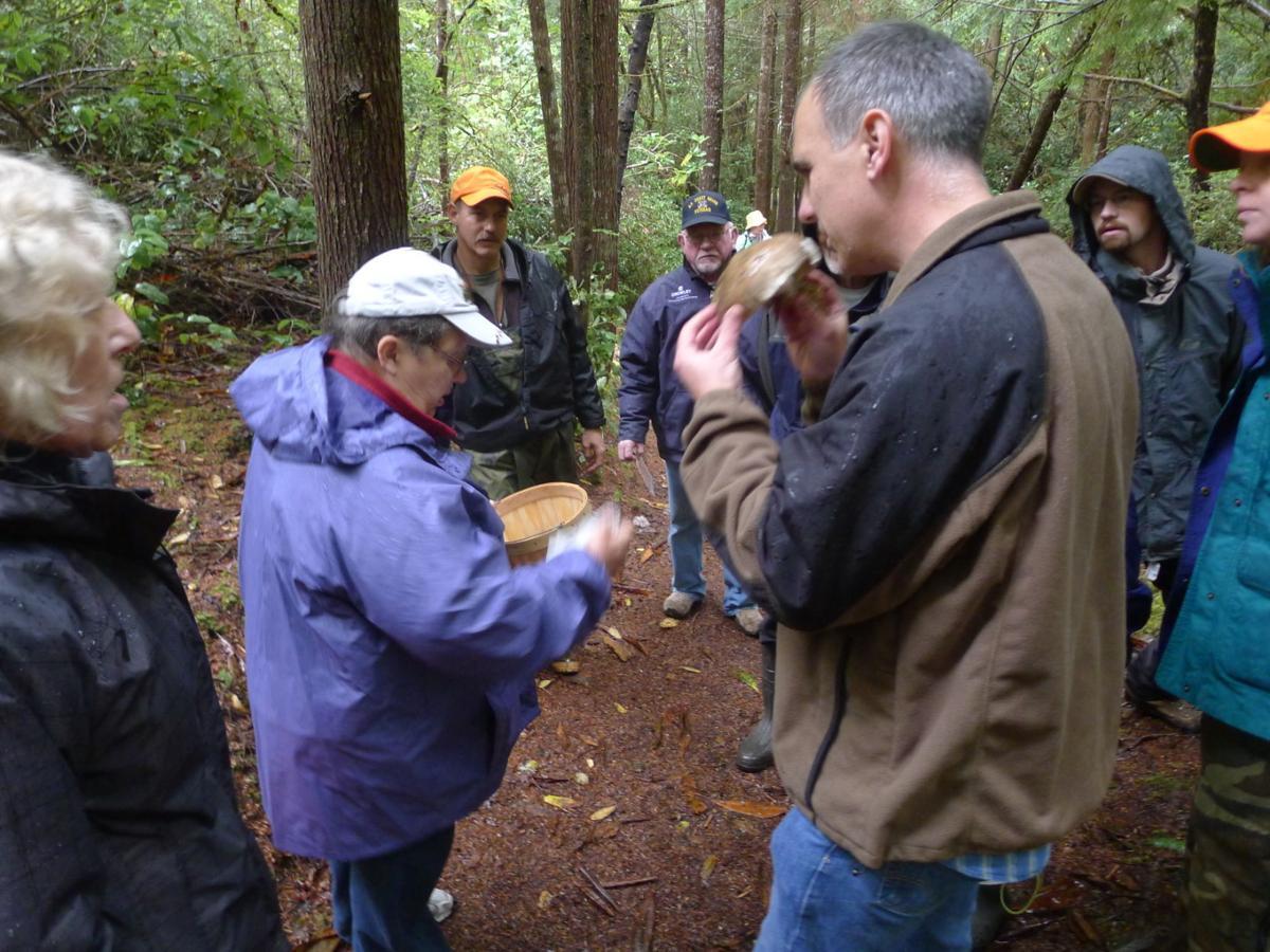John Schaefer Mushrooms