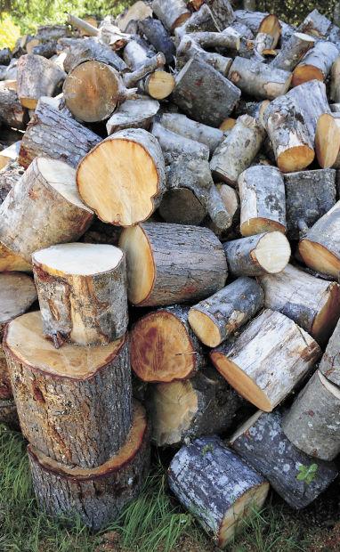 Firewood 008.jpg