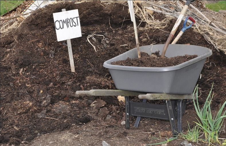 Cold Compost