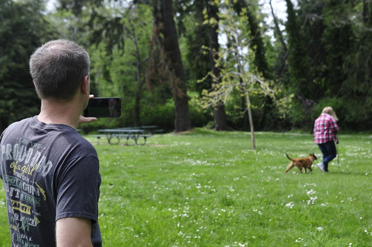 Dogs 2, Film