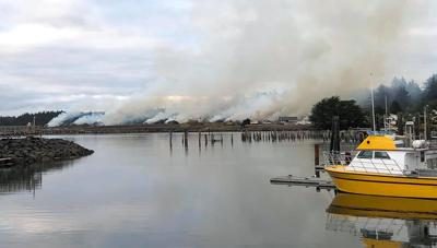 Moore Mill controlled burn
