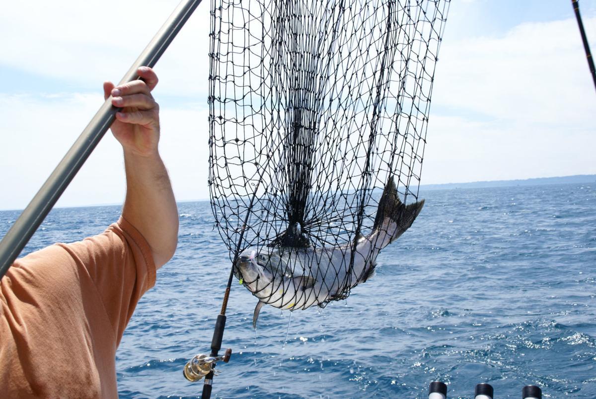 145185590 Salmon fishing
