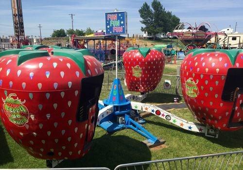 Cranberry Festival 2019 - Berry-Go-Round