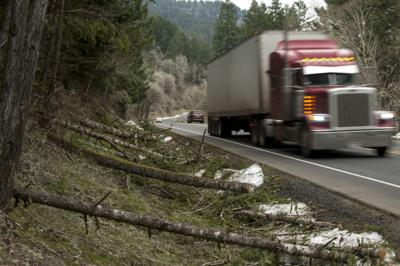 Douglas County Storm