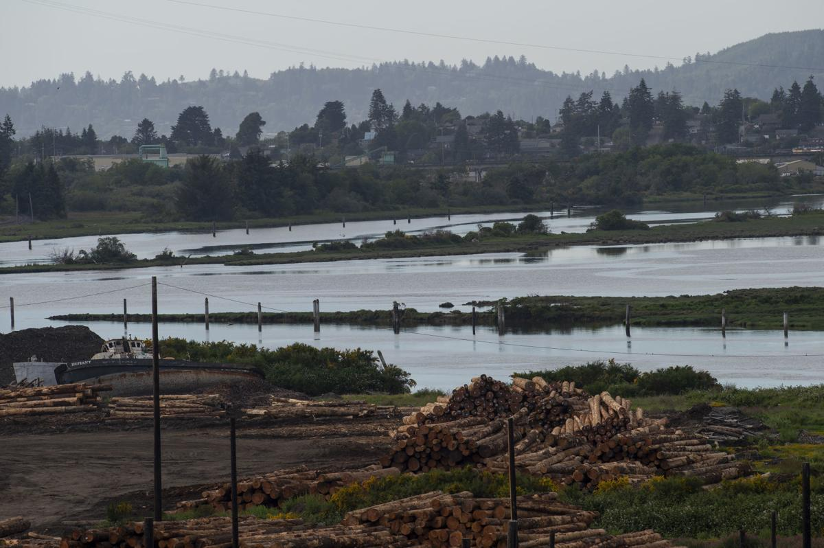 New plan for Coos Bay Estuary