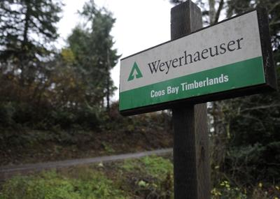 North Bend to purchase parcel at 'Graveyard Point' | Government and