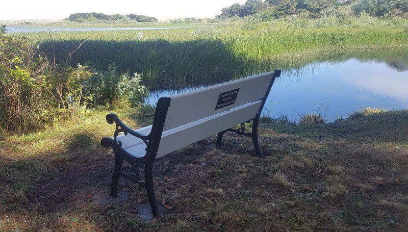 New bench at Floras Lake
