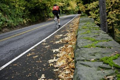 155315408 cyclist