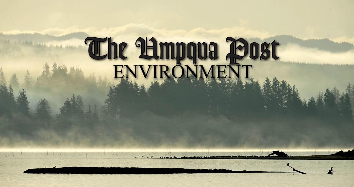 Umpqua Post Environment STOCK