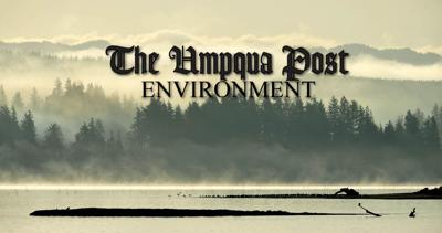 Umpqua Post Environment STOCK
