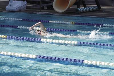 bella jones 500 freestyle