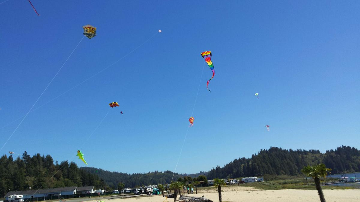 Kites at the first Kite Fly In