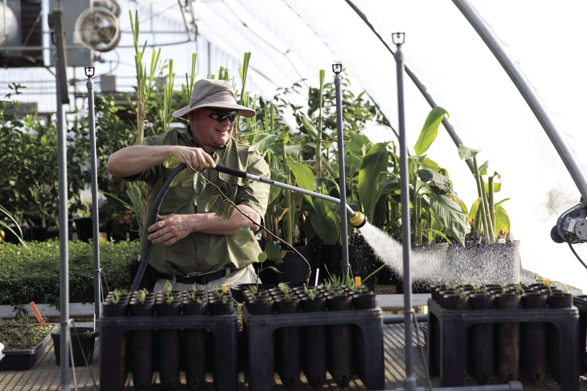 UGA horticulturist Mark Czarnota is one of many UGA faculty who are collaborating with scientists at the Georgia Institute of Technology to improve the state's agricultural industry.