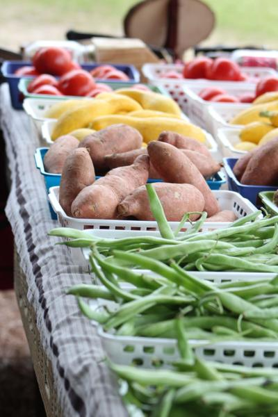 Both the Wiregrass Farmers Market and the 41 South Farmers Market will be open on Saturday.