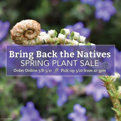 Bring Back the Natives