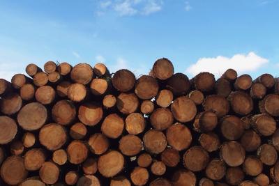 LogsStackedHC1608_source.tif