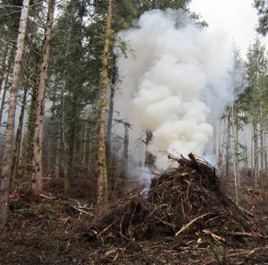 Pile burning has begun on the Siuslaw National Forest