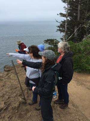Access limited to Cape Lookout parking lot