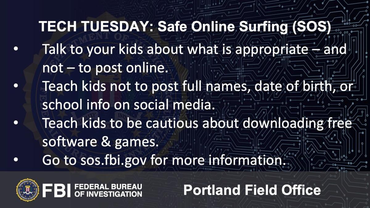 Building a Digital Defense with Safe Online Surfing (SOS)