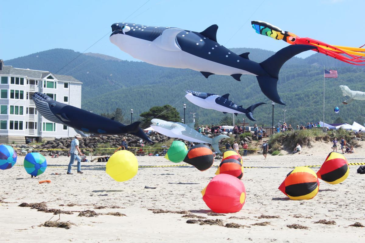 Kite Art Festival
