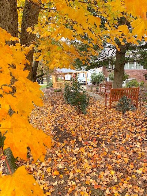 Memorial Garden for the Unborn now open to public