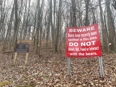 Bear sightings possible this time of year
