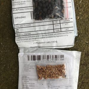 Extension Office says mystery seeds could pose real threat