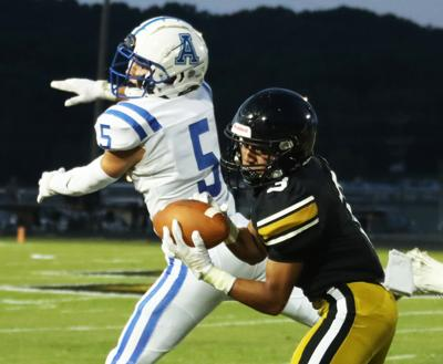 Wildcats fall to Knights in region opener