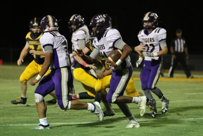 Tigers topple Panthers for 4th straight win