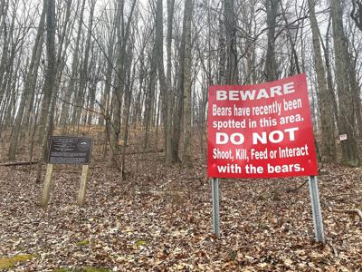 Bear sightings reported in Mentone area