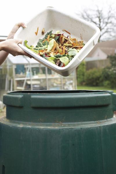 Don't waste your food waste