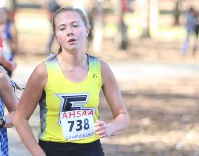 Fort Payne girls finish state runners-up