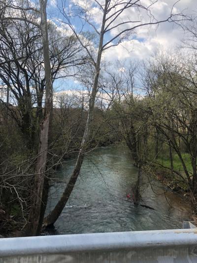 Body found in Wills Creek Thursday