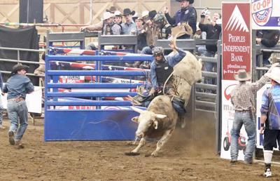 Bull Bash returns to Northeast Alabama Agri-Business Center