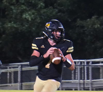 Strong opening half helps Hornets past Tigers
