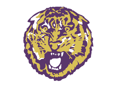 Tigers' Morgan runs for 3 TDs in loss vs. Panthers