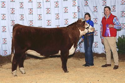 Months of prep pay off during Jr. Beef Expo