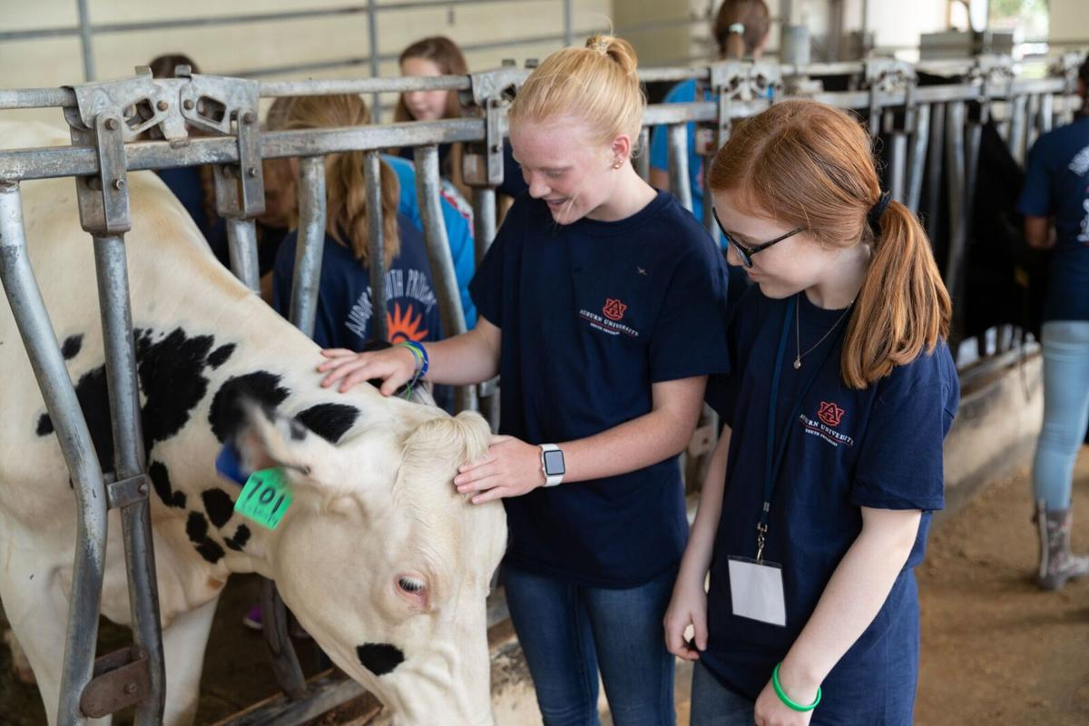 Sylvania student attends vet camp