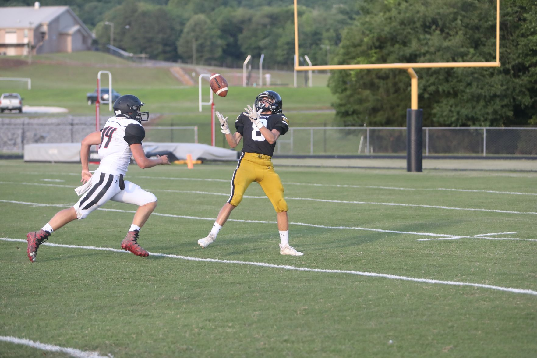 'Cats cap off spring with shutout win in jamboree