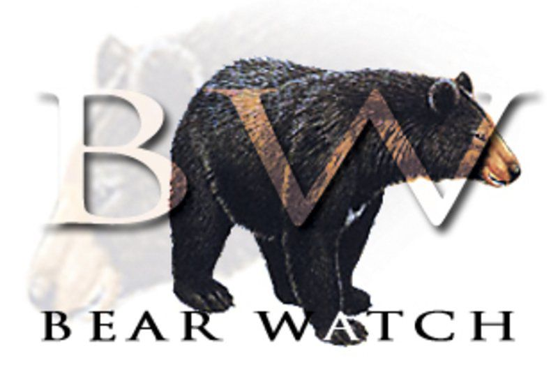 More bear road kills