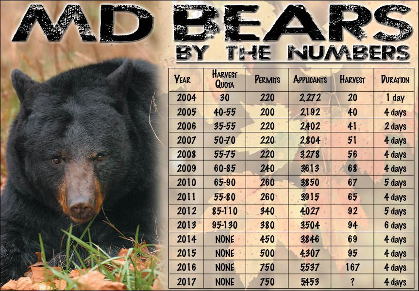 Bear harvest graphic 10/17/17