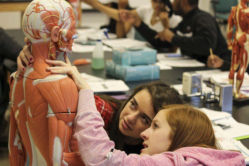 Human Anatomy Model Enhances Classes At Frostburg State University