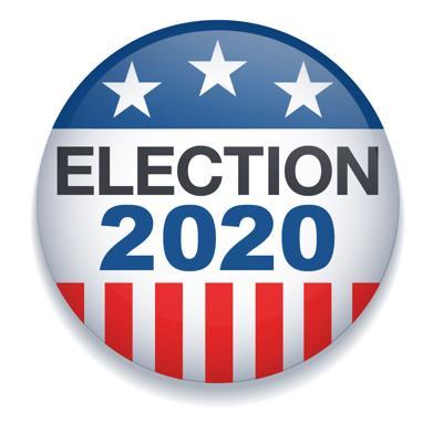 2020 Campaign Button