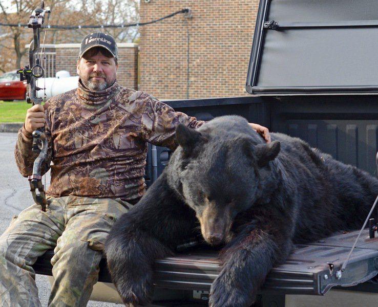 Hunters Bag 68 Pa. Bears Of More Than 500 Pounds