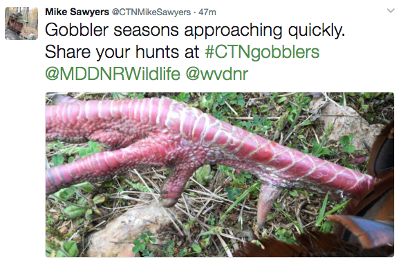 #CTNgobblers