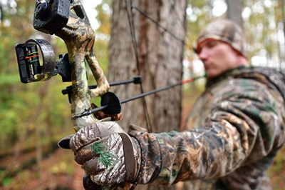 West Virginia's archery and crossbow seasons open Sept  29