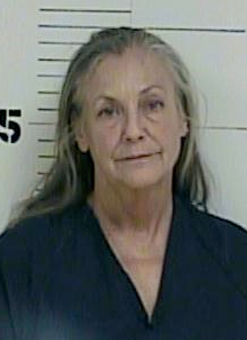 Alice Walton The Daughter Of Walmart Founder Sam Was Arrested And Charged With Driving While Intoxicated Speeding