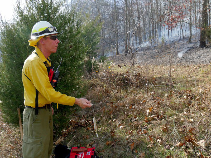 Officials: Setting forests ablaze part of healthy management plan